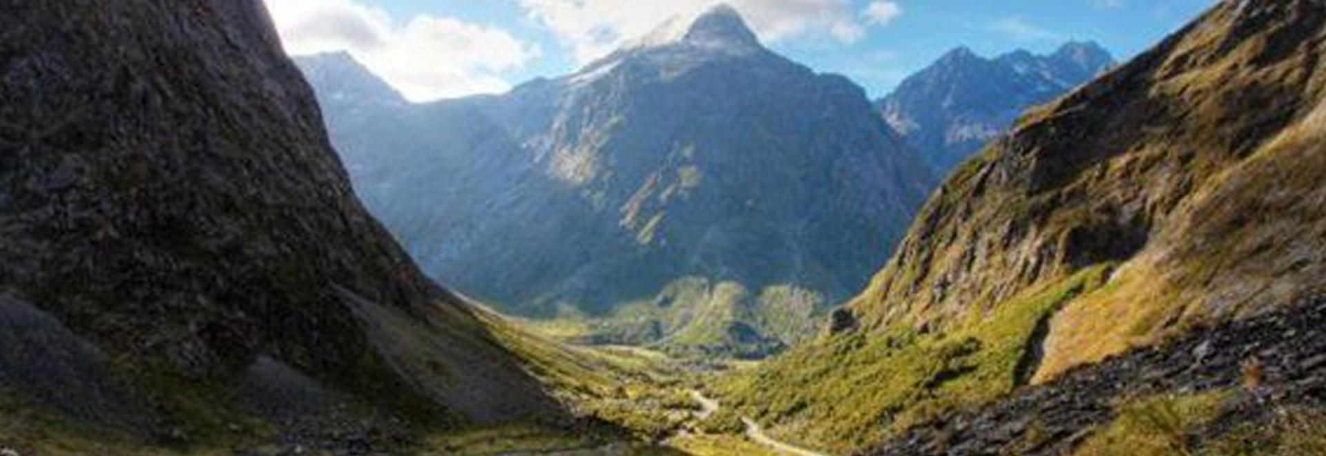 Wild Nuova Zelanda: l'ultimo paradiso