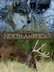 S3 Ep3 - Wild Nord America