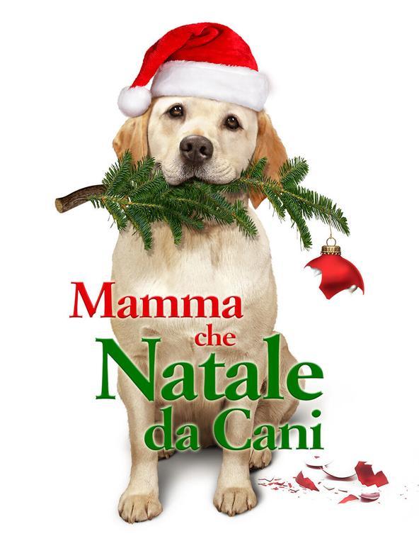 Mamma che Natale da cani!