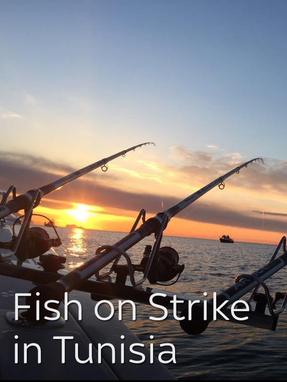 Fish on Strike in Tunisia