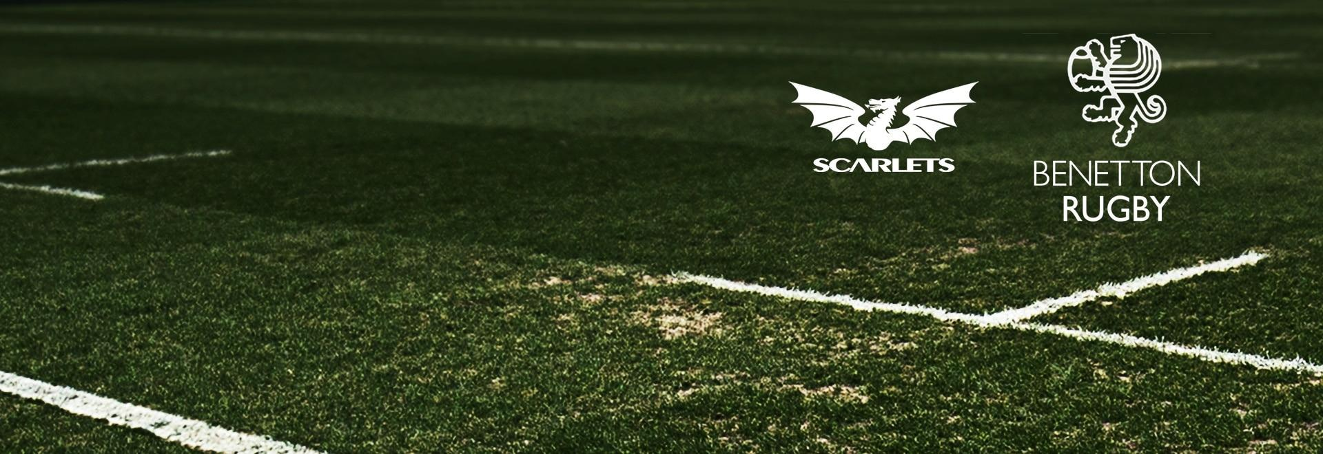 Scarlets - Treviso