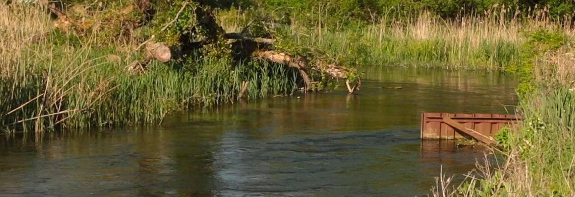 Il fiume Test. 1a parte