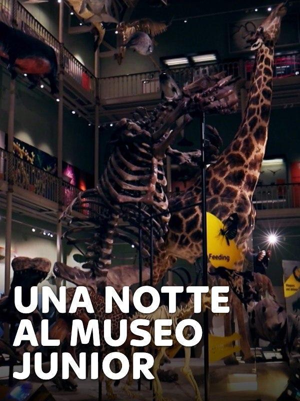 Una notte al museo Jr - 1^TV