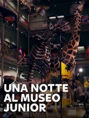 S1 Ep1 - Una notte al museo - Junior