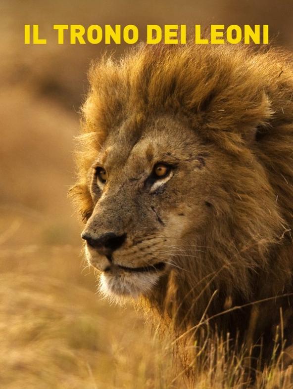 Il trono dei leoni