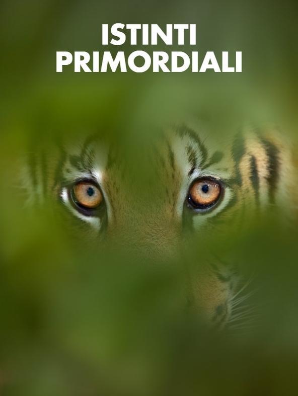 S1 Ep6 - Istinti primordiali