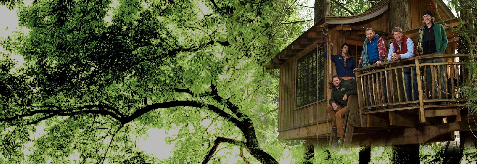 Utopia sull'albero