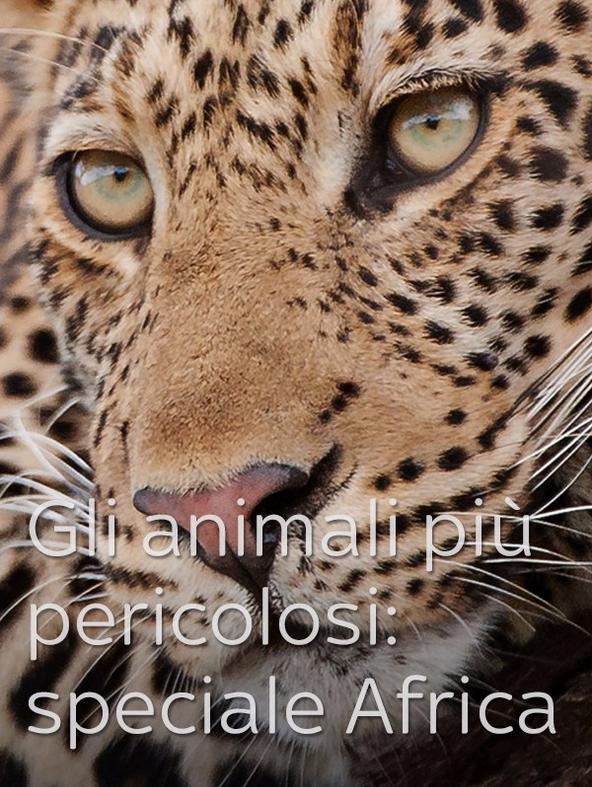 Gli animali piu' pericolosi: Botswana