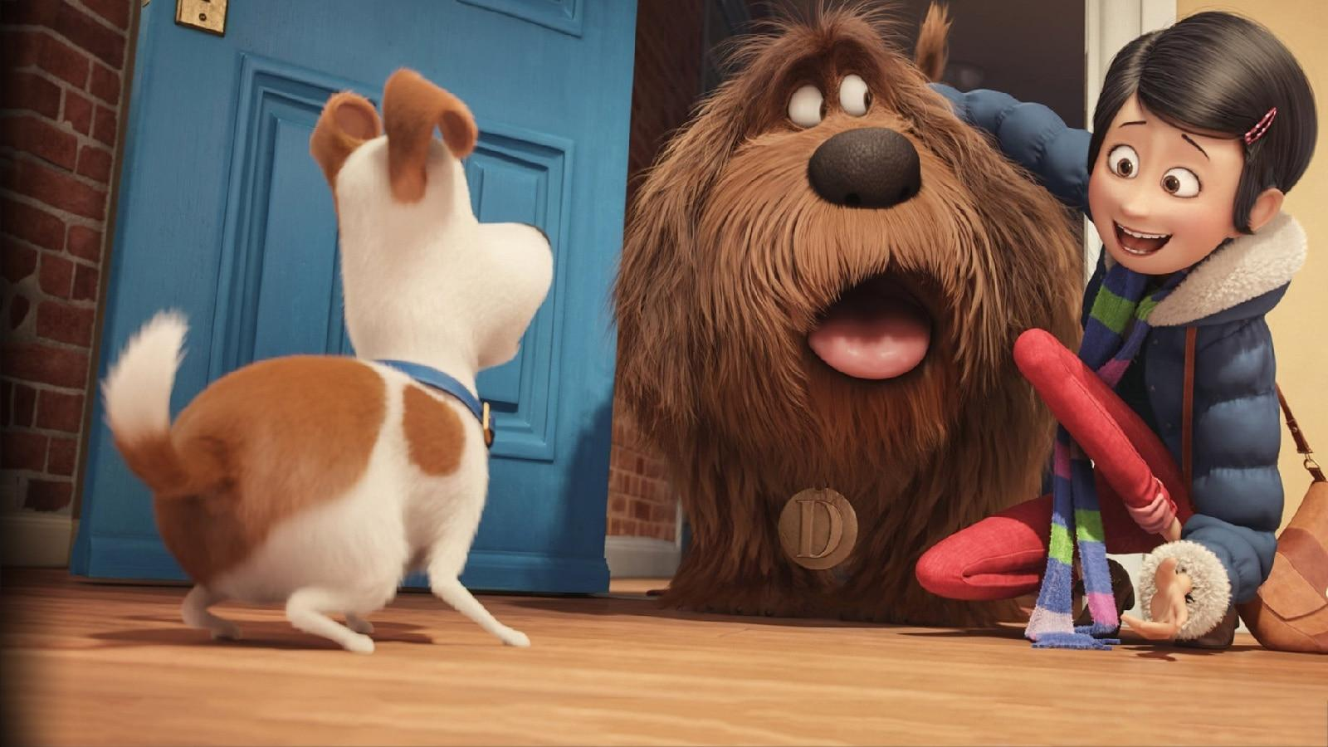 Premium Cinema 1 Pets - Vita da animali