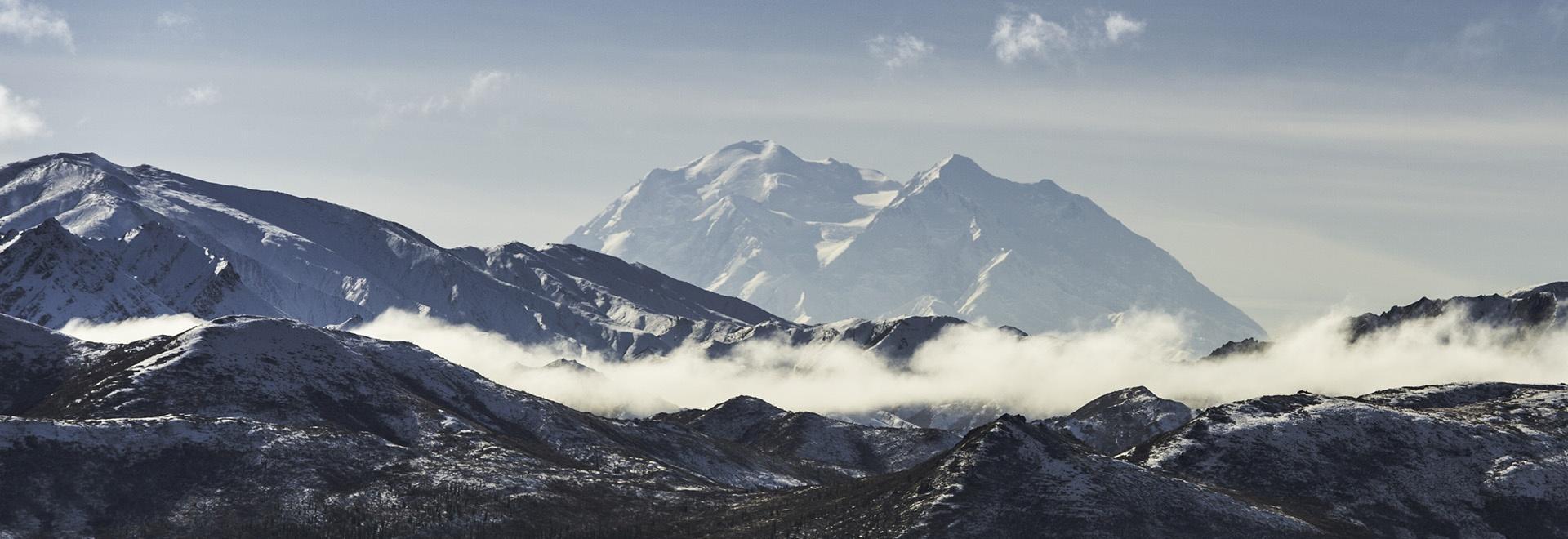 Gli animali più pericolosi: Alaska