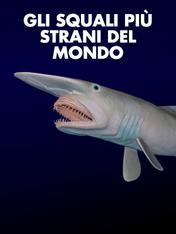 Gli squali piu' strani del mondo