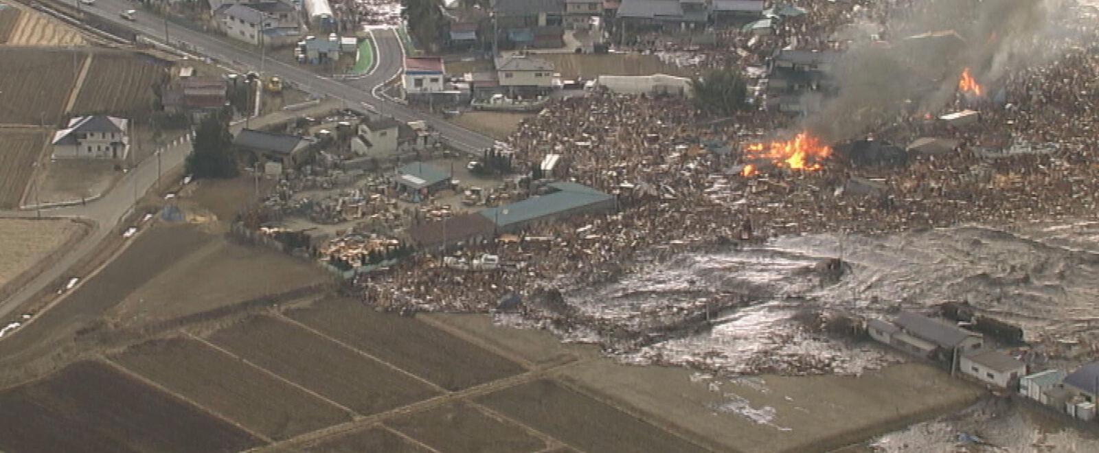 3/11 tsunami
