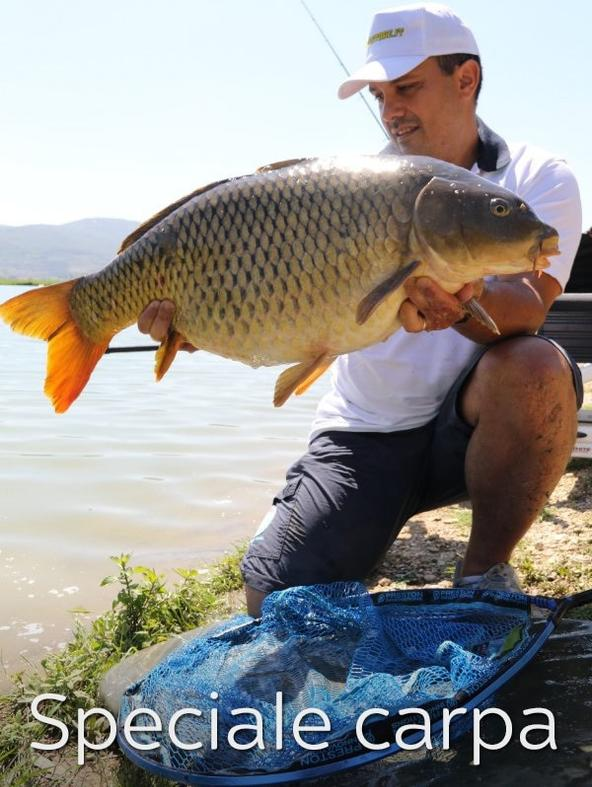 S1 Ep1 - Speciale carpa