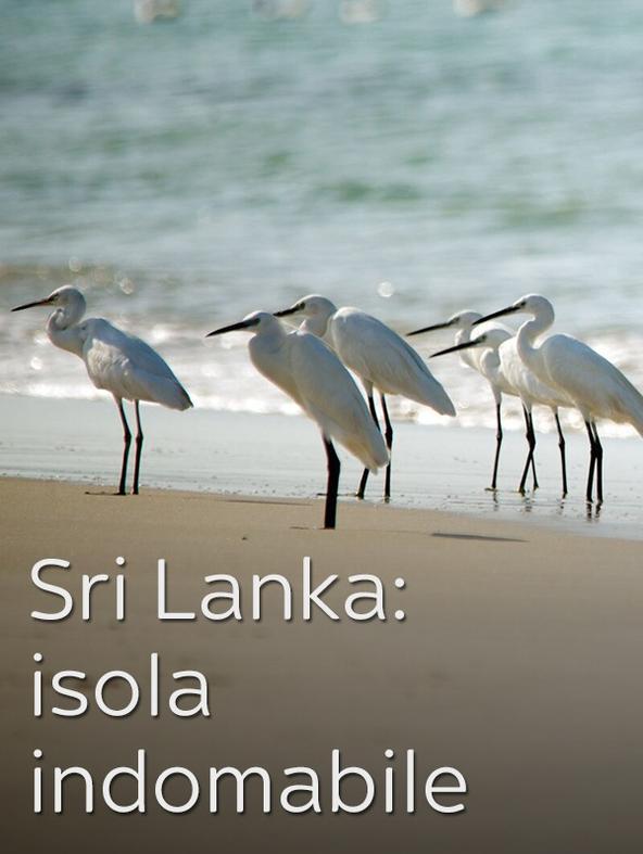 Sri Lanka: isola indomabile