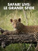 Safari Live: le grandi sfide
