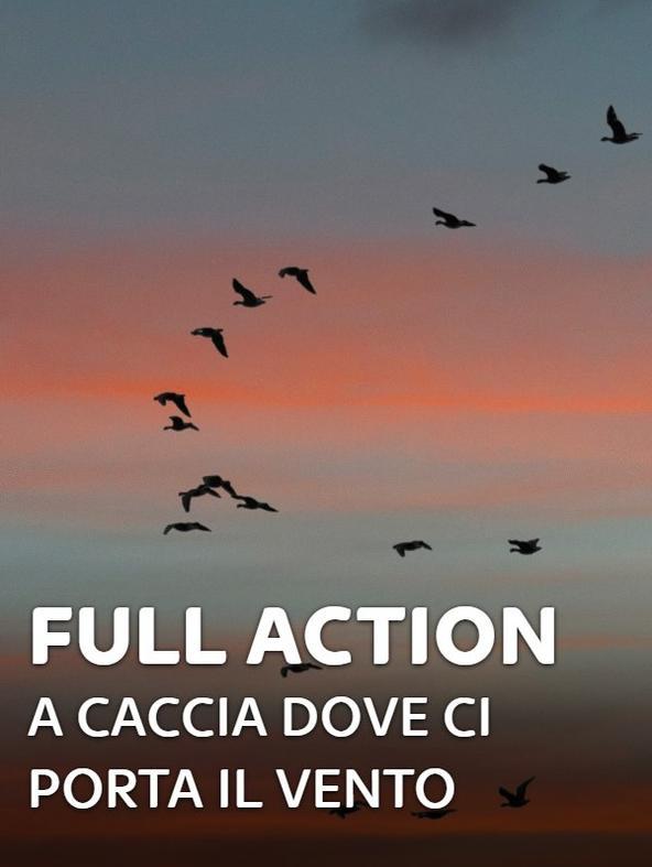 Full Action: A caccia dove ci porta...