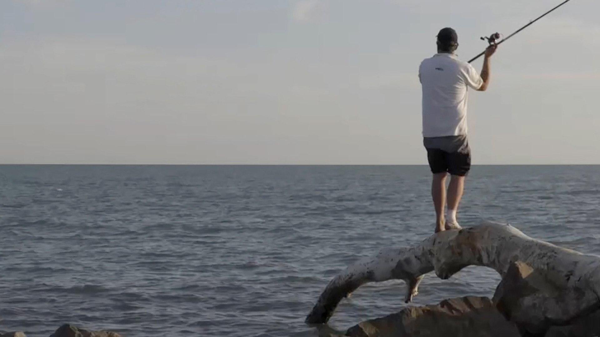 Caccia e PESCA A pesca di orate