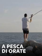 S1 Ep7 - A pesca di orate 1