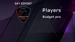 Budget pro